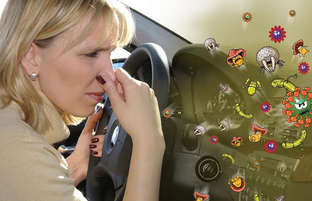 Запах и бактерии
