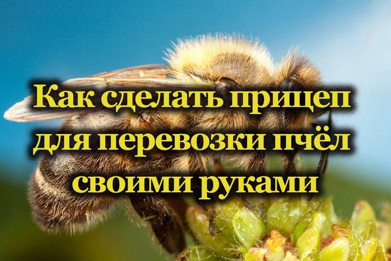 Перевозка пчёл в ульях